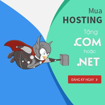Mua hosting tặng tên miền .COM/NET/.INFO/.ORG/.BIZ